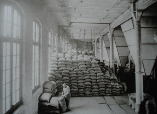 Cacaofabrieken (12)